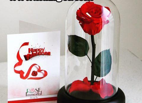 رپرتاژ آگهی گل فروشی آنلاین نازی گل